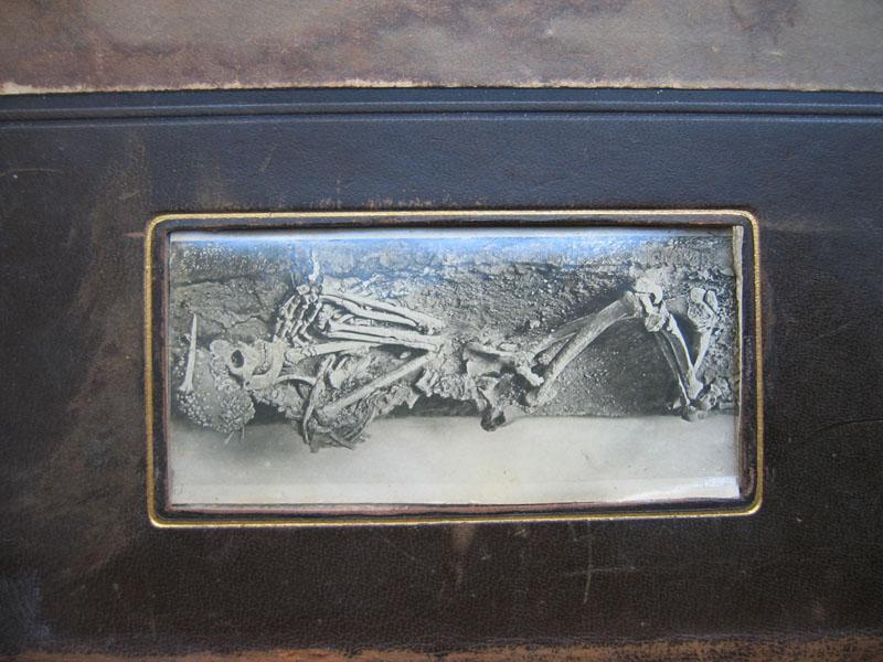 Lübke-Semrau Kunstgeschichte von 1905 (Detailaufnahme Ariane)