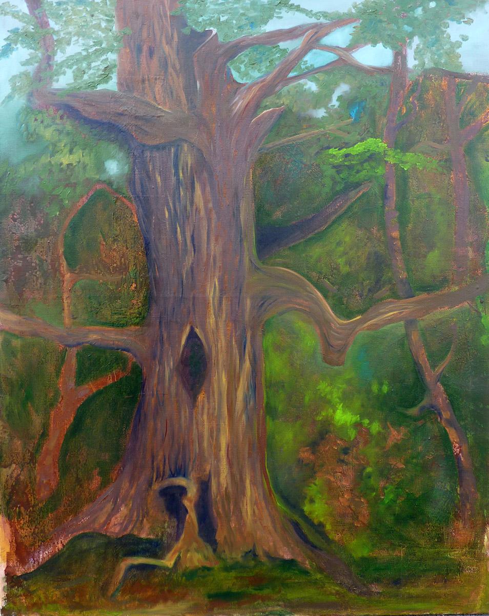 Kamneiche, Öl auf Leinwand, 80 x 100 cm, Ariane Zuber